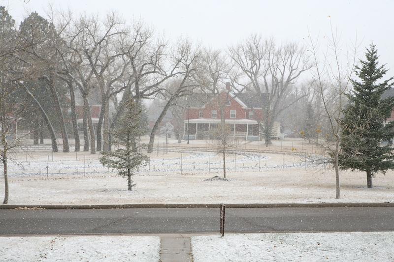 Snow2010