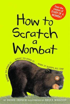 How-to-scratch-a-wombat-where-to-find-it-what-to-feed-it-why-it-sleeps-all-day