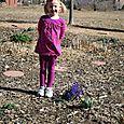 Grace Hyacinthe with Hyacinths   4.5.11