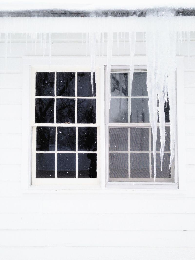 Snowday (1)