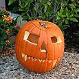 Bridget's Creepy Robot Vamipre Pumpkin