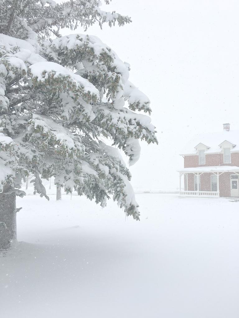 May snow 11