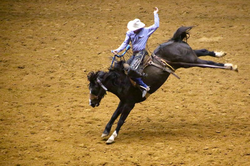 SLE Rodeo 1