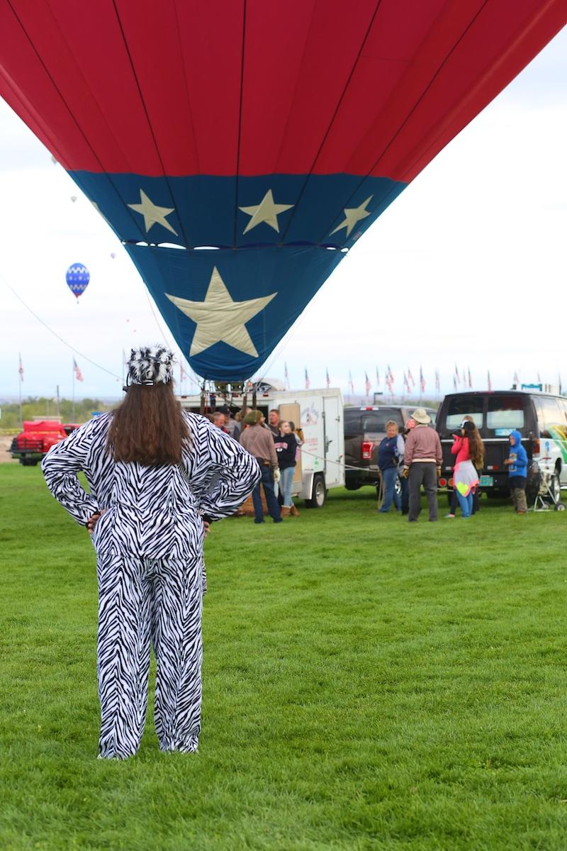 Albuquerque International Balloon Fiesta Zebra
