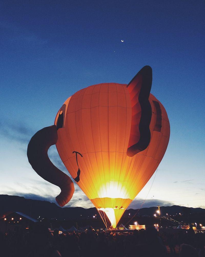 Albuquerque International Balloon Fiesta 2 (1)