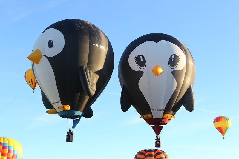 Albuquerque International Balloon Fiesta 20