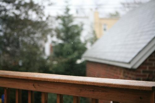Rain | 2.1.08