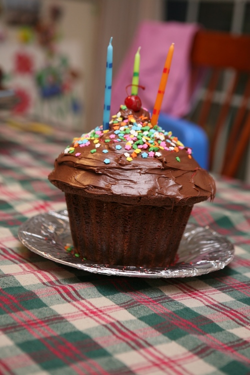 Giant Cupcake   1.5.08