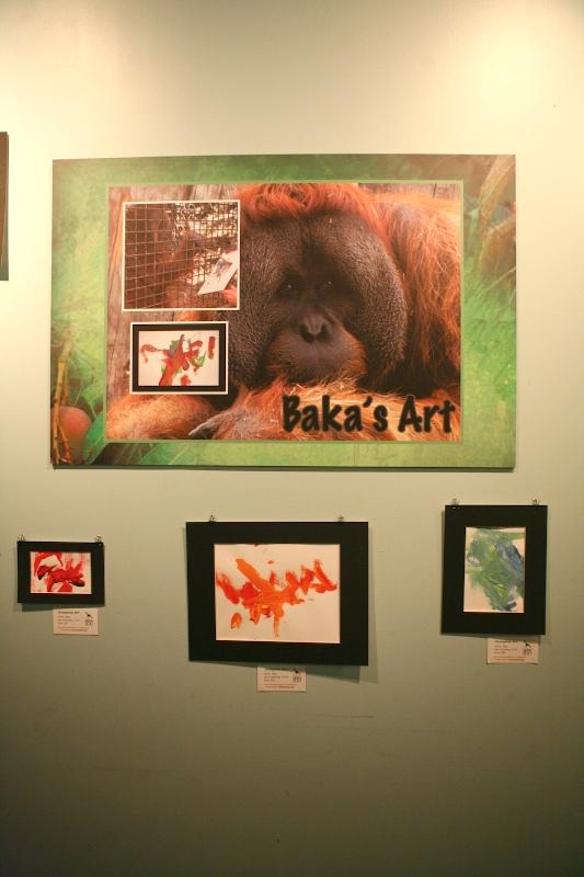 Orangutan Art Gallery