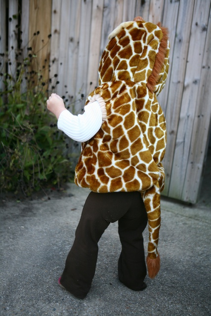 She Walks About As Slowly as a Real Giraffe