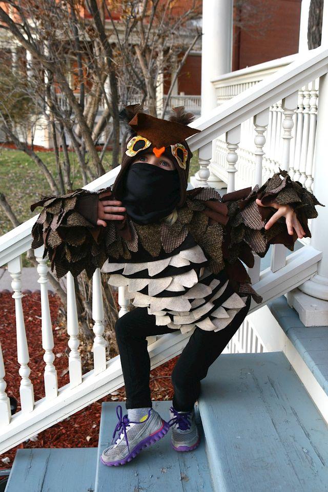 Ninja-Owl, Again