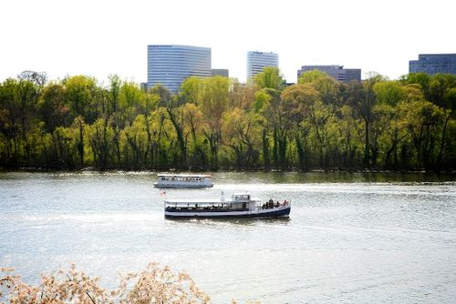 Hello, Theodore Roosevelt Island and Rosslyn