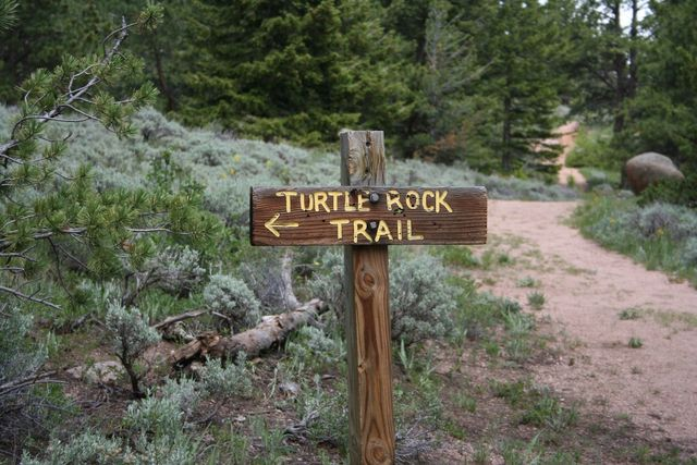 Our Favorite Vedauwoo Trail
