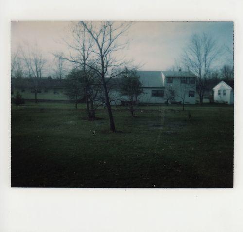The Backyard in Winter   1980s